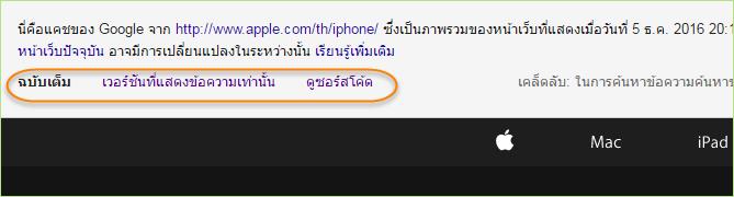 web_cache_google12