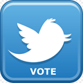 create_vote_on_twitter